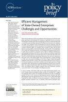 Efficient Management of State-Owned Enterprises