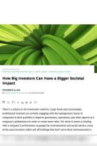 How Big Investors Can Have a Bigger Societal Impact