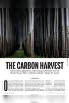 The Carbon Harvest