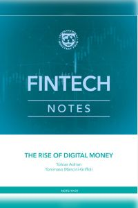 The Rise of Digital Money summary
