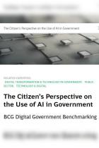 The Citizen's Perspective on the Use of AI in Government