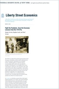 Fight the Pandemic, Save the Economy summary