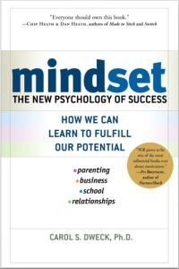 Mindset book summary