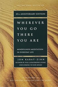 Wherever You Go, There You Are book summary